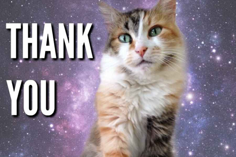 thank you space cat meme