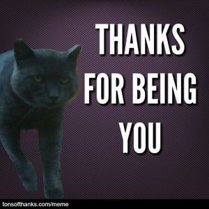 thanks for being you cat meme
